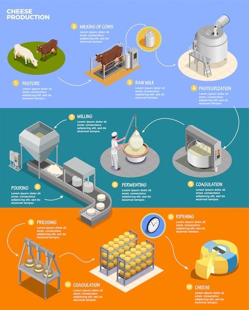 Kaasproductie isometrische infographicslay-out met elf fasen van kaasbereiding uit rauwe melk Gratis Vector