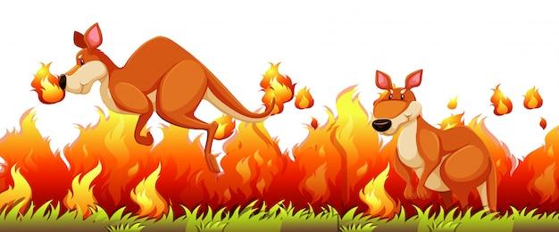 Kangoeroe ontsnappen aan het bosvuur Gratis Vector