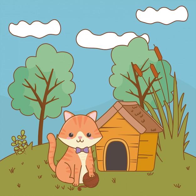 Kat cartoon illustraties illustratie Premium Vector