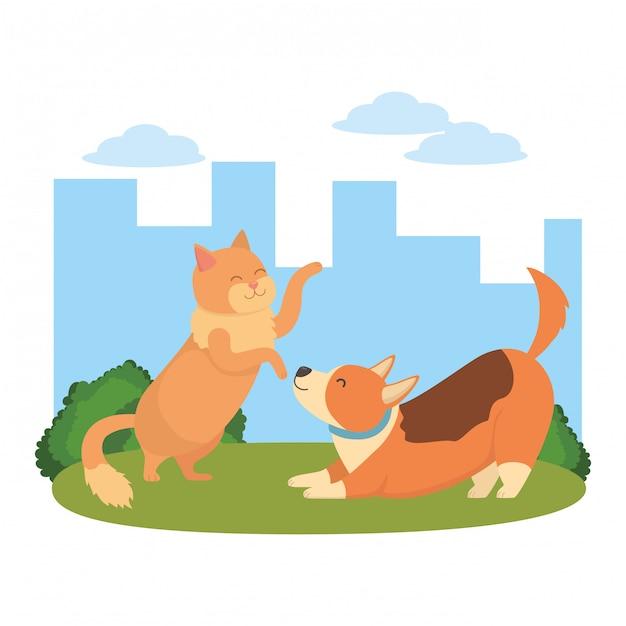 Kat en hond cartoon Gratis Vector