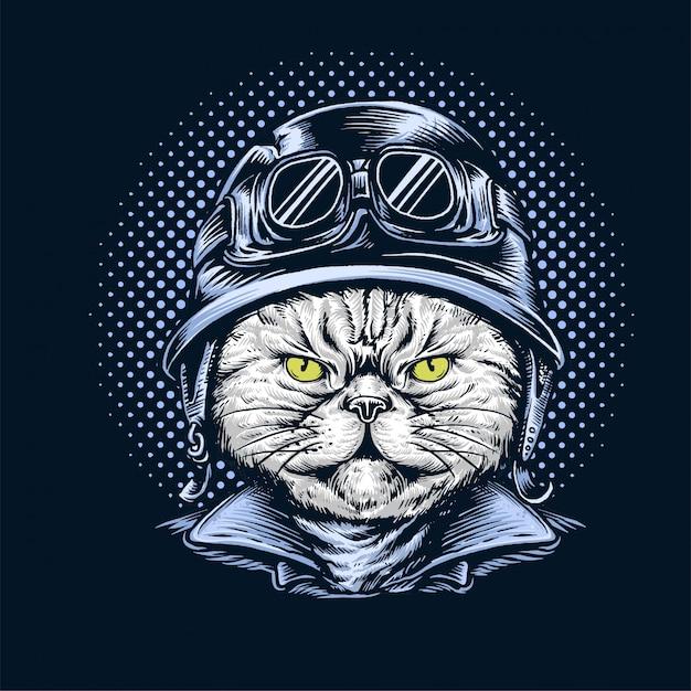 Kat met helm Premium Vector
