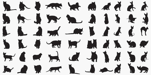 Katten silhouetten Premium Vector