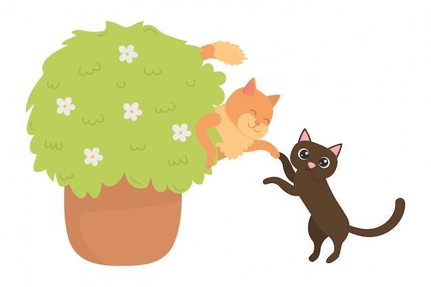 Katten van tekenfilms Gratis Vector