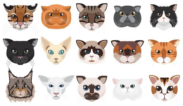 Kattenhoofden worden geconfronteerd met emoties Premium Vector
