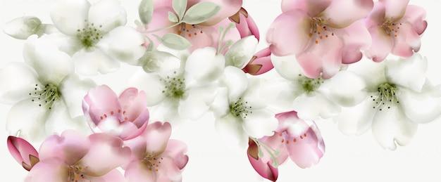 Kersenbloemen aquarel achtergrond Premium Vector