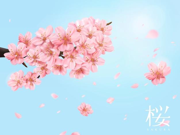 Kersenbloesemtak en vliegende bloemen op glanzende blauwe hemel in illustratie, kersenbloesem in japans woord aan de rechterkant Premium Vector