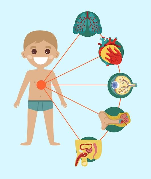 Kid gezondheid infographic met menselijk lichaam anatomie Premium Vector