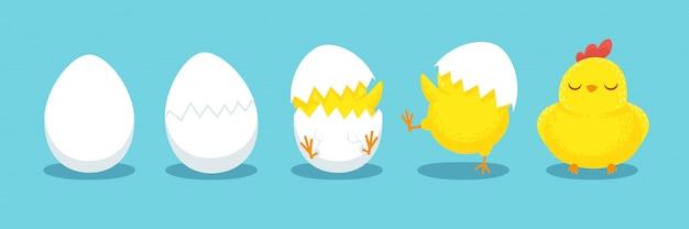 Kip broedeieren, gebarsten kuiken ei, broedeieren en uitgekomen pasen kuikens cartoon Premium Vector