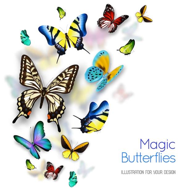 Kleine en grote kleurrijke magische vlinders geïsoleerd op een witte achtergrond met schaduwen Gratis Vector