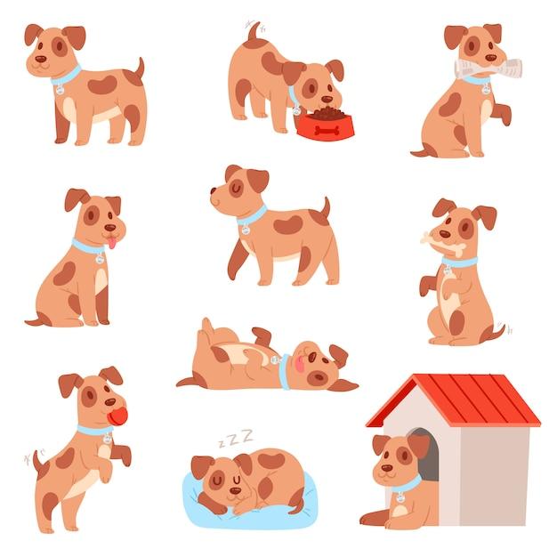 Kleine hondje puppy set Premium Vector