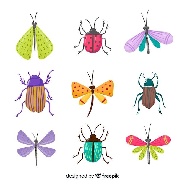 Kleurrijk hand getrokken insectenpak Gratis Vector