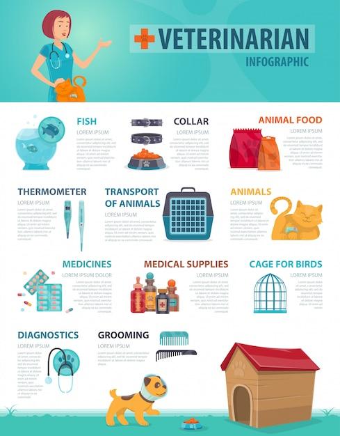 Kleurrijke dierenarts infographic concept Gratis Vector