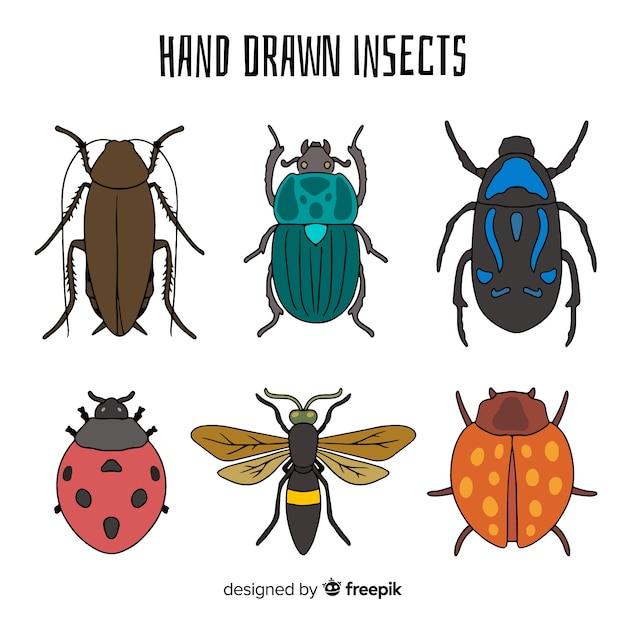 Kleurrijke hand getrokken insectencollectie Gratis Vector