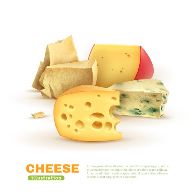 Kleurrijke kaas sjabloon Gratis Vector