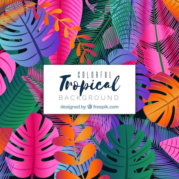 Kleurrijke tropische achtergrond met platte ontwerp Gratis Vector
