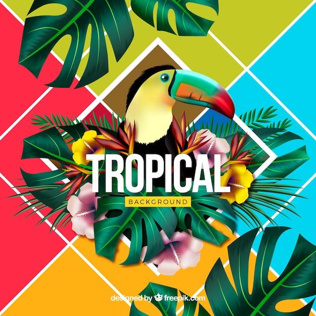Kleurrijke tropische achtergrond met realistisch ontwerp Gratis Vector