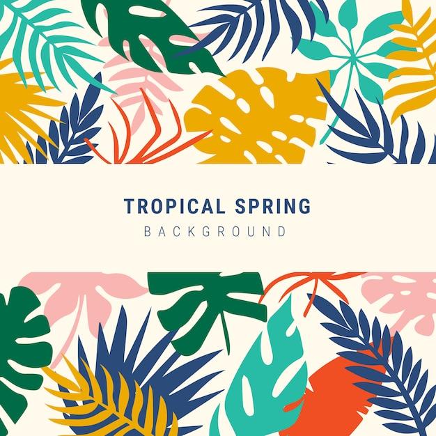 Kleurrijke tropische bladeren lente achtergrond Gratis Vector