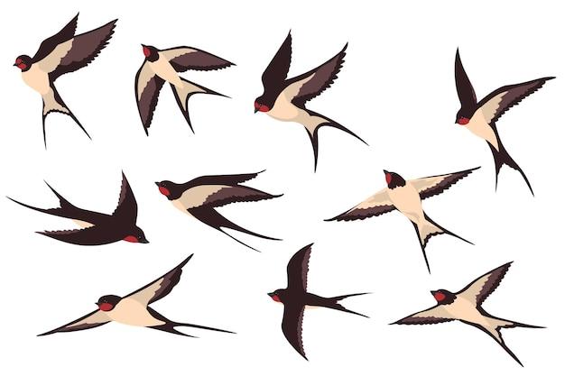 Kleurrijke vliegende zwaluwen vlakke afbeelding instellen. Gratis Vector