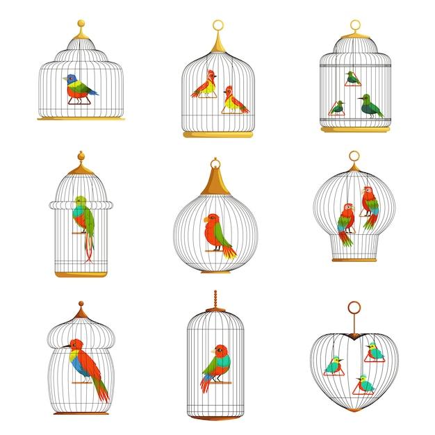 Kleurrijke vogels in kooien set illustraties Premium Vector