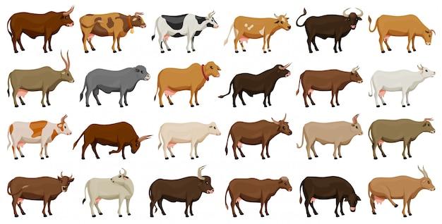 Koe van dier vector cartoon ingesteld pictogram. geïsoleerde cartoon pictogram boerderij dier van koe Premium Vector