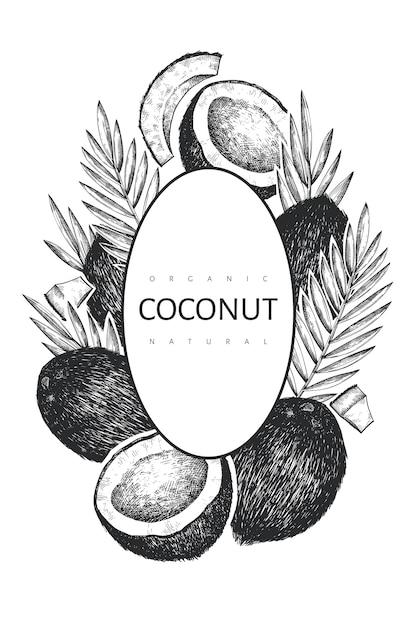 Kokosnoot met palm bladeren ontwerpsjabloon. hand getekend voedsel illustratie. gegraveerde stijl exotische plant. retro botanische tropische achtergrond. Premium Vector