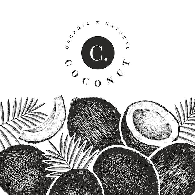 Kokosnoot met palm bladeren ontwerpsjabloon Premium Vector