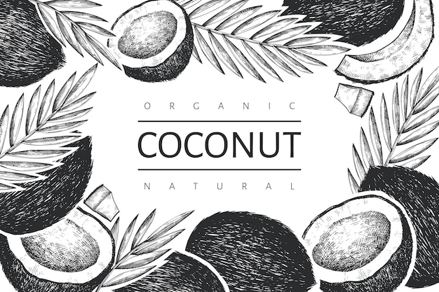 Kokosnoot met palm bladeren sjabloon. hand getekend voedsel illustratie. gegraveerde stijl exotische plant. Premium Vector