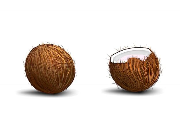 Kokosnoot op witte achtergrond met schaduw wordt geïsoleerd die Premium Vector