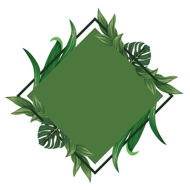 Krijg wat inspiratie voor de tropische groene thema-frameachtergrond voor uw indruk typografie en citaten aantrekkelijker. Premium Vector