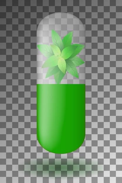 Kruidencapsule met muntblaadjes aan de binnenkant. Premium Vector