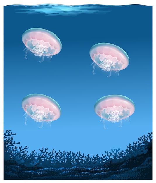 Kwallen onder diepe oceaan Gratis Vector