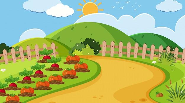 Landschapsachtergrond van moestuin Premium Vector