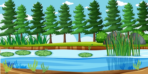Leeg landschap in de scène van het natuurpark met veel pijnbomen en moeras Gratis Vector