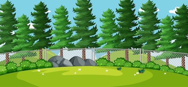 Leeg landschap in de scène van het natuurpark met veel pijnbomen Gratis Vector