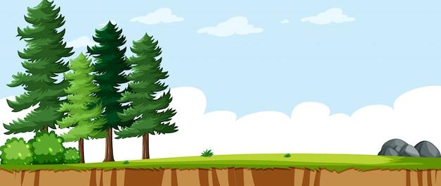 Leeg landschap in natuur park scène met enkele dennen Gratis Vector