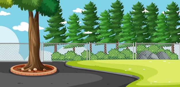Leeg landschap in natuur park scène met veel dennen Gratis Vector