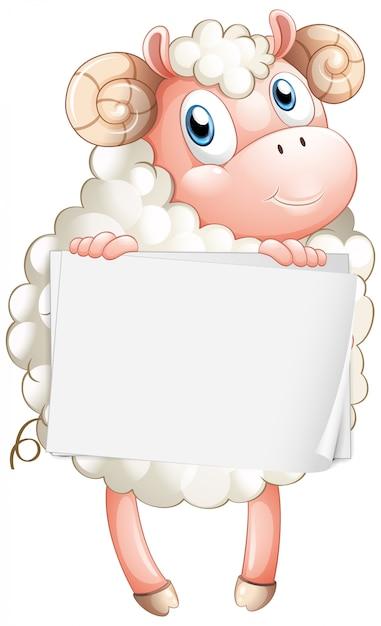 Leeg tekenmalplaatje met witte schapen op witte achtergrond Gratis Vector
