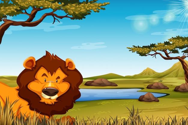 Leeuw in afrikaanse landschapsscène Gratis Vector
