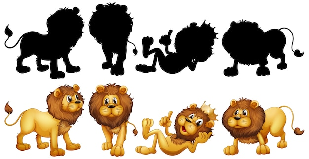 Leeuw met zijn silhouet Gratis Vector