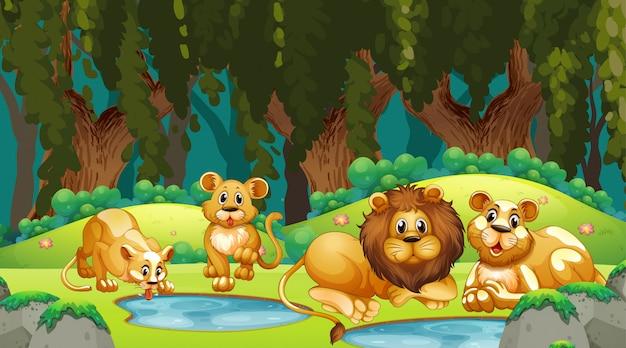 Leeuwen in jungle scene Gratis Vector