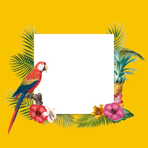 Lege tropische achtergrond Gratis Vector