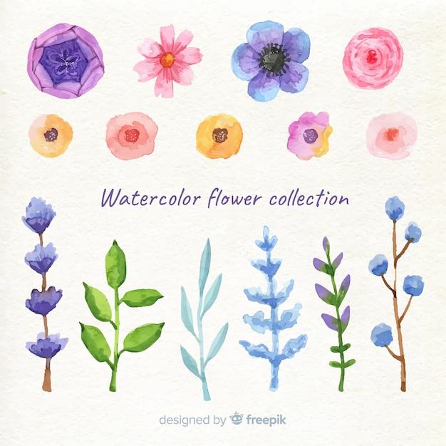 Lente bloemen collectie Gratis Vector