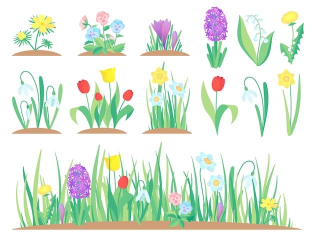 Lente bloemen, tuin tulp bloem, vroege bloemen planten en tulpen planten tuinieren geïsoleerde set Premium Vector
