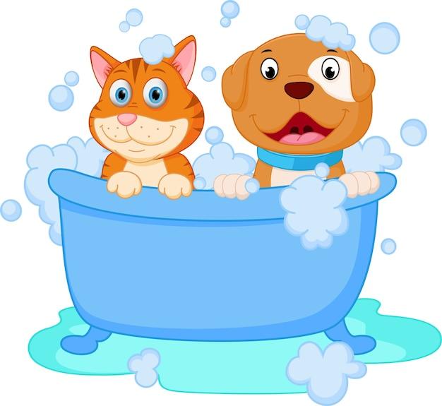 Leuk honden- en kattenbad Premium Vector