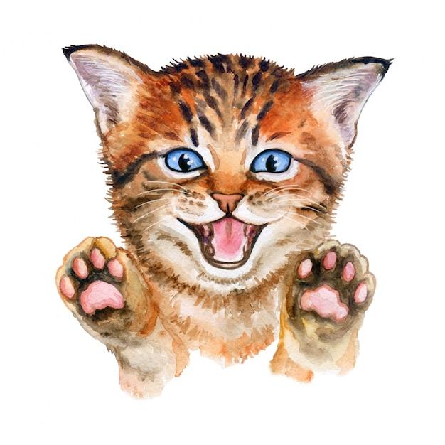 Leuk katje met opgeheven poten. waterverf Premium Vector
