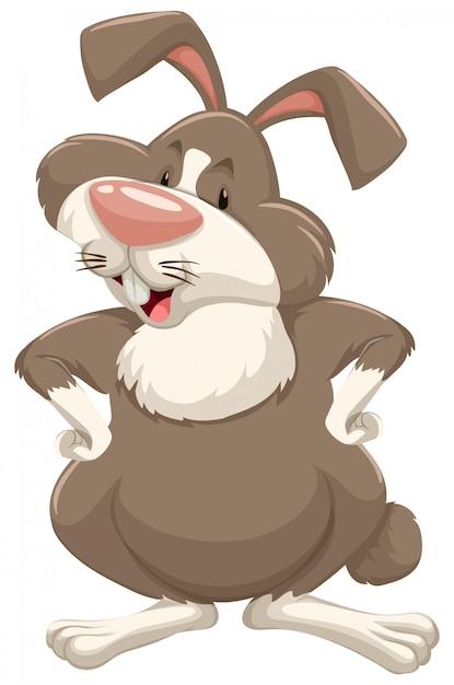 Leuk konijn met bruin bont op wit Gratis Vector