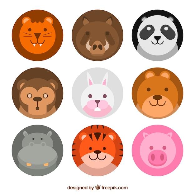 Leuk pak met mooie dierlijke gezichten Gratis Vector