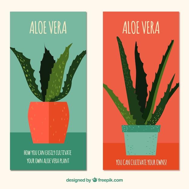 Leuke aloë vera pottende banners in plat ontwerp Gratis Vector
