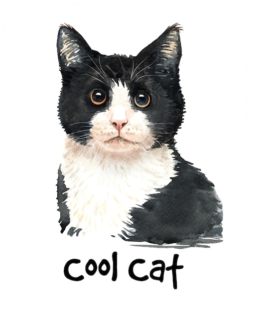 Leuke aquarel zwarte kat illustratie. Premium Vector