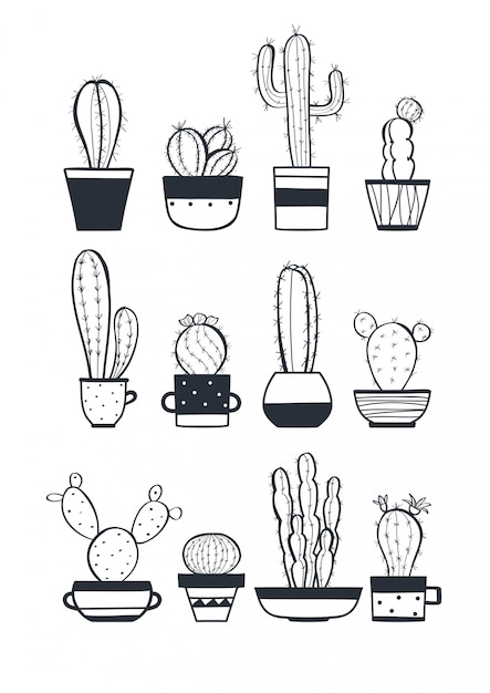 Leuke cactus set Premium Vector